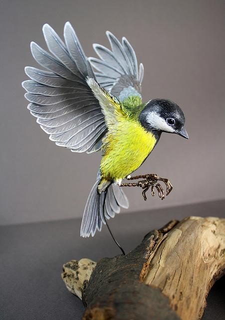 Bird Sculptures realistic bird sculptures from paper & wood - zack mclaughlin