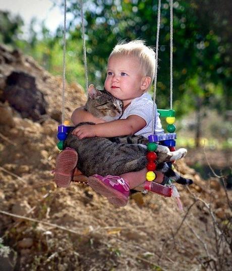 boy holds cat on swing