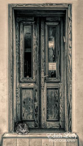 Israel, Tel Aviv, hotel, Peer Hotel, cat, door, wood door, monochrome, travel photography