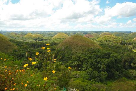 The Usual Bohol Land Tour