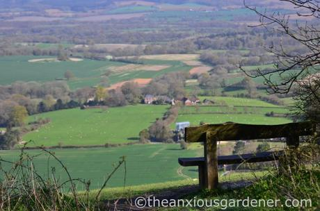 South Downs Way (6)