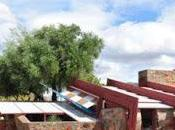 FRANK LLOYD WRIGHT'S TALIESIN WEST Guest Post Caroline Hatton