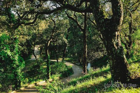 Parque do Covelo (Porto, Portugal)