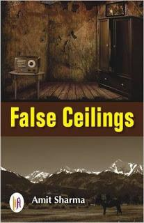 False Celings Book Review