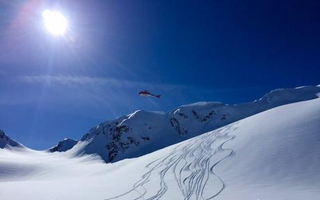The bird coming in for a landing over the epic pow in the Chuggach Mountains