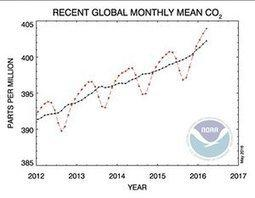 World's carbon dioxide concentration teetering on the point of no return
