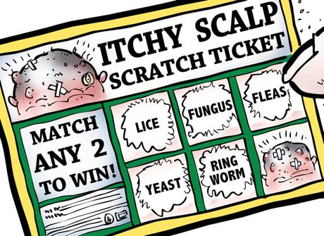 detail image bogus scratch-off lottery ticket called itchy scalp match any two scalp diseases to win, lice, fungus, fleas, yeast, ringworm, fingertip scratching ticket