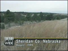 A view of the terrain around Whiteclay, Nebraska. A wolverine was sighted on the South Dakota border about 17 miles east of here.