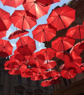 red umbrellas by daylight