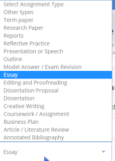 StudyBay Review: Editing And Academic Custom Writing Service