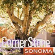 WITWIB? @CornerstoneSonoma | Sunset Celebration Weekend