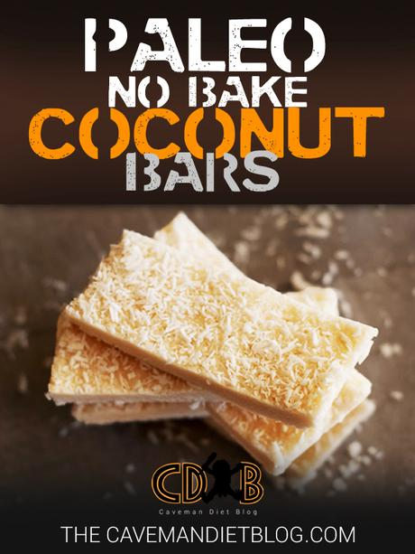 paleo dessert recipes coconut bars main image