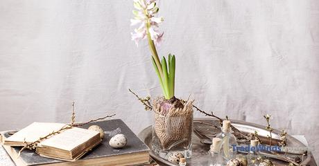 Easter interior with Hyacinth flower, old books and quail eggs. See series