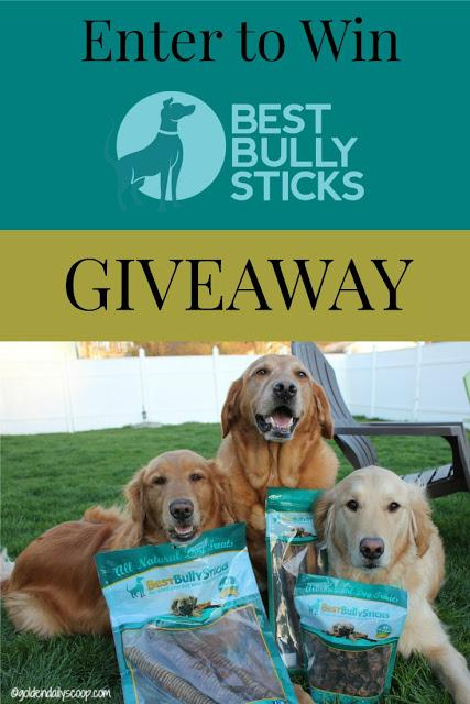 Get Your Chew on With Best Bully Sticks