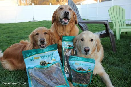 best bully sticks for dogs review and giveaway