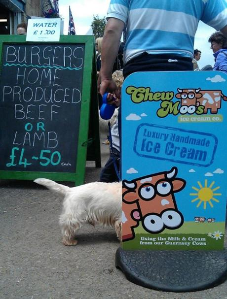 Dog Interacting With Cow Sign