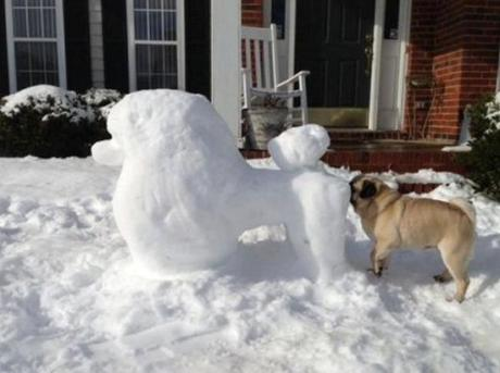 Dog Sniffing Snow Sculpture Of Other Dog