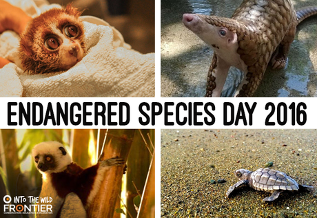 Struggling Animals - Endangered Species Day 2016