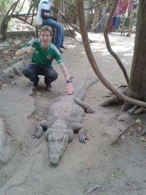 Stroking Crocodiles at Kachikally Pool, Bakau, The Gambia