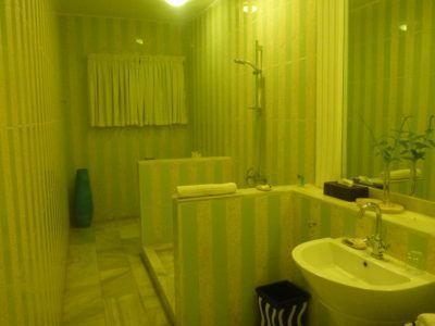 My luxury bathroom (2)