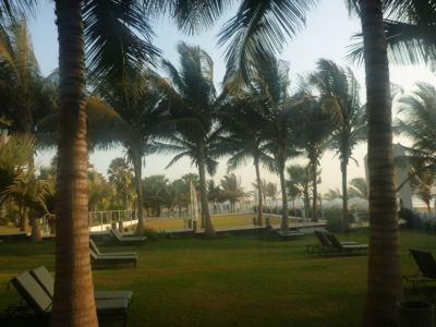 Sun loungers by the beach