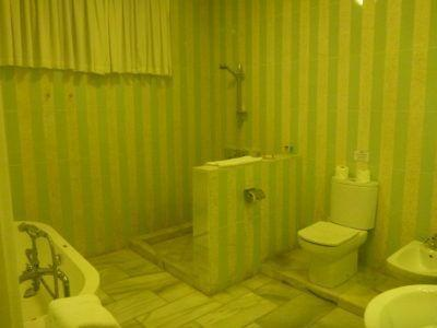 My luxury bathroom (1)