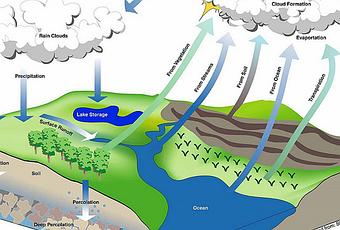 hydrologic cycle essay Read this essay on hydrologic cycle come browse our large digital warehouse of free sample essays get the knowledge you need in order to pass your classes and more.