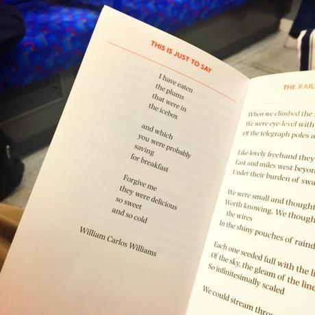 Poems on the Underground at 30