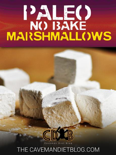 paleo dessert recipes marshmallow main image