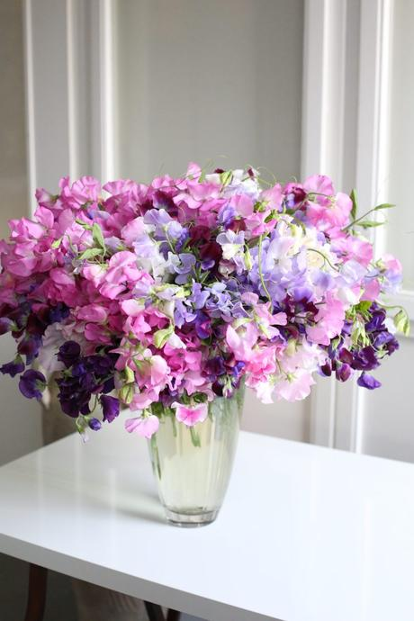Sweet Pea Arrangement
