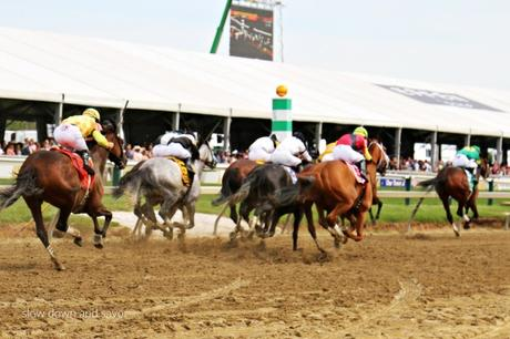 Black Eyed Susan Day | Preakness Stakes