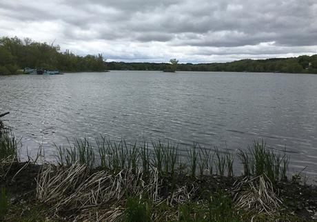 Rice Lake_mile 22