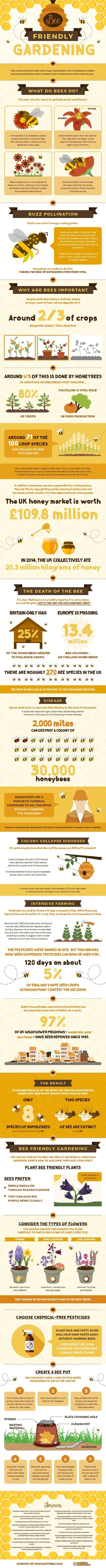 Saving Bees and their Habitat