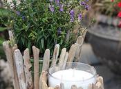 Creating Expandable Driftwood Candleholders Plant Holders