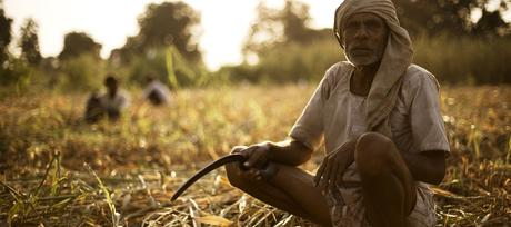 The Future of Farmers in India and what are the Contributing Factors for Farmers Suicides today.