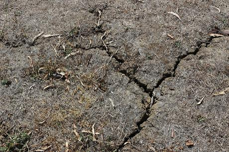 Causes effects and solutions of soil erosion paperblog for Soil erosion causes