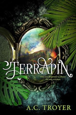 TERRAPIN: A New Young Adult Fantasy