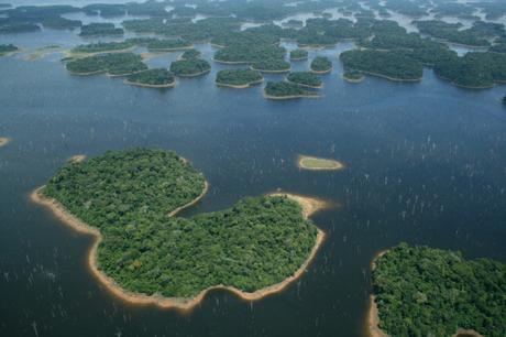 Archipelago of forest islands within the Balbina hydroelectric reservoir, Brazil. Image: Eduardo M. Venticinque via C. Peres