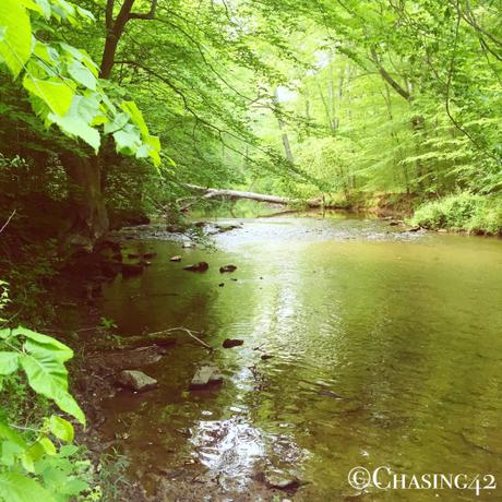 Ridley Creek State Park offers some gorgeous hiking!