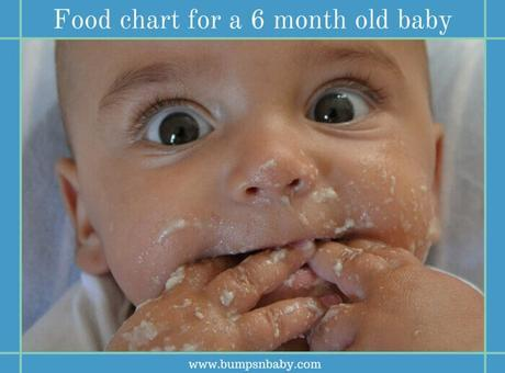 6 Month Old Feeding Schedule (FREE Printable Food Charts)