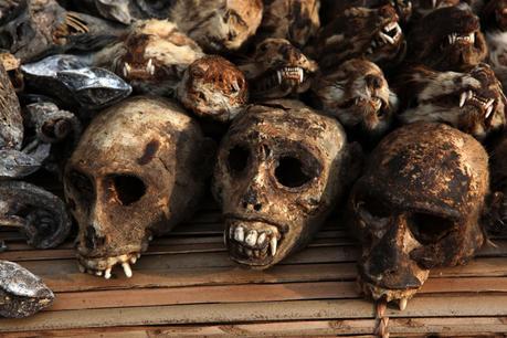 Voodoo- The World's Most Misunderstood Religions  - Paperblog