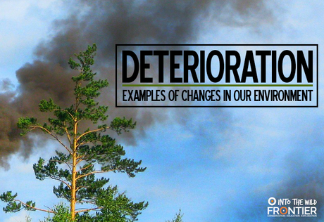 the changes in our environment Climate change will keep advancing unless we slay the dragons of inaction by kenneth worthy phd climate change, narcissism we might be accessing cues from both our body and the environment that tells us when that final curtain is likely to be are we environmental criminals by richard.