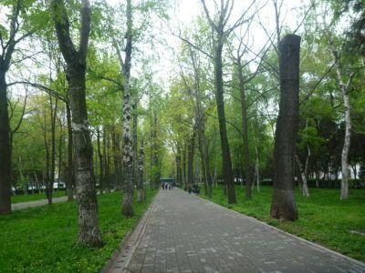 Erkindik Park