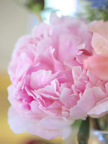 In A Vase On Monday – Just Loving The Peonies!