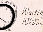Waiting Wednesday Crooked Kingdom Leigh Bardugo