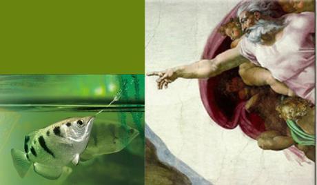 God creates the archerfish