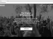 BitTorrent Acquires Domain BT.co: Price $75,000