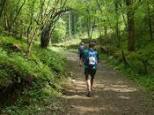 Mendip Challenge 2016: Mile Route