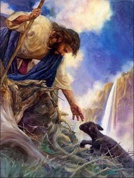 Good Shepherd saves lost lamb