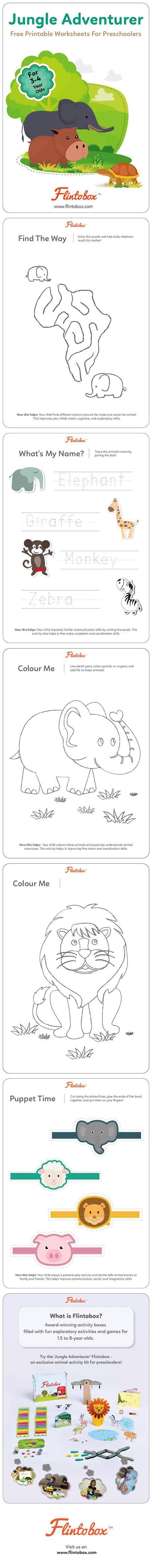 Animal Preschooler Worksheet